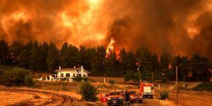 Weiterlesen: Stellungnahme S. Em. Metropolit Arsenios von Austria zu den Feuern in Griechenland